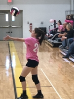 Pleasant Hope claims 4th place in the Pleasant Hope Dig Pink Volleyball Invitational today